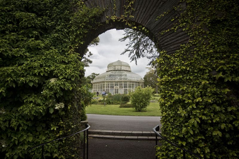 The Botanic Gardens is one of 10 romantic spots for a picnic in Dublin